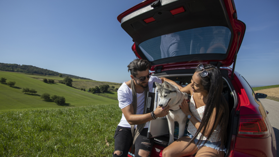 Couple with dog and car